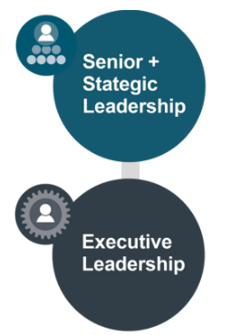 Senior and executive combined icons