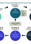 Process Map for Conducting Strategic Equality Impact Assessment